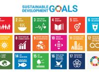 A European Semester for the Sustainable Development Goals?